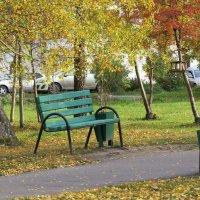 Осень в парке :: Елена Лапина