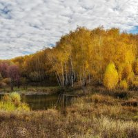 Осенние моменты :: Igor Yakovlev