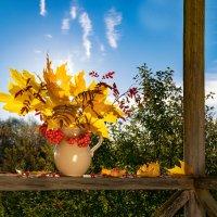 Золотые краски осени :: Марина Ломина