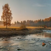 Бабье лето , река Амата , Латвия . :: Егор Егоров