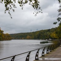 Москва-река и осень. :: Владимир Безбородов
