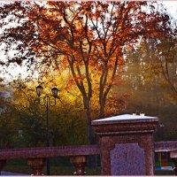 Осенний парк :: Vladimir Semenchukov