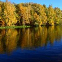 Осень — последняя, самая восхитительная улыбка года. :: Ольга Русанова (olg-rusanowa2010)