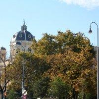 Осень в Вене.....! :: Наталия Павлова