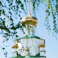 Вид на храм :: Elena Wise