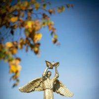 Осень в парке :: юрий Амосов