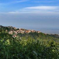 Сигнахи-город любви в Грузии :: Marina Timoveewa