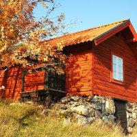 Национальный парк-резерват деревня Тюреста Швеция :: Swetlana V