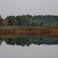 Осенний пейзаж :: Анна Васильева (Anna-82V)