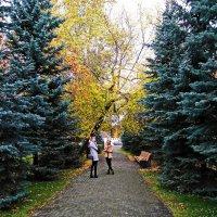 В осеннем парке ... :: Татьяна Котельникова