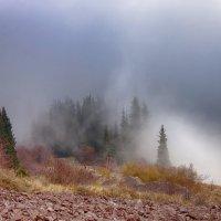 Магия тумана :: Elina.Mag