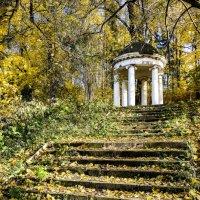 парк-усадьба Ленинские Горки :: Георгий