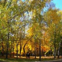 Золотая осень в городе....... :: Любовь К.