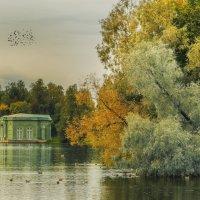 Гатчина. Осень :: Владимир Колесников