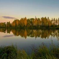 Осенний подиум :: Александр Попович