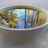 Чашка кофе и осень ♥ :: Ирина Via