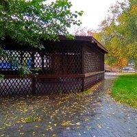 Дождливый день ... :: Татьяна Котельникова
