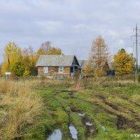 Деревня Пустой двор :: Яна Старковская