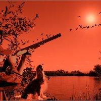 Как мы на уточек охотились. :: Anatol Livtsov