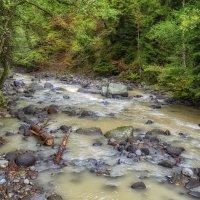 Река Боржомула в Грузии :: Marina Timoveewa