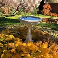 Золотая осень :: minchanka