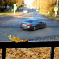 Осень. :: Ирина С