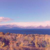 Дымчатый пейзаж ... :: Лариса Корж