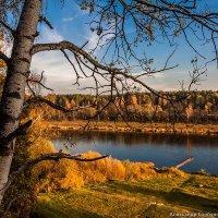 Стояла осень золотая... :: Александр Горбунов