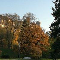 Осень у  стен Старого города :: veera (veerra)