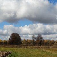 Осень :: Татьяна Сапрыкина