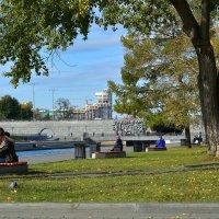 Осень на Плотинке. :: Наталья