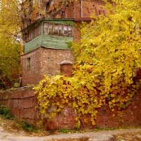 Осеннее настроение. :: Nata