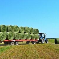 Вывоз сена с поля :: Валентина