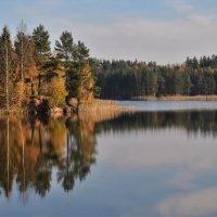 Осенний пейзаж. :: Татьяна Глинская