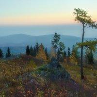 Тропа на вершине :: vladimir Bormotov