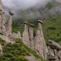 Каменные грибы :: Юрий Харченко