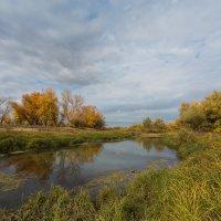 Осень :: Олег Дорошенко