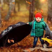 Осень :: Андрей Бубенин