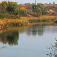 Степное озеро :: Юрий Гайворонский