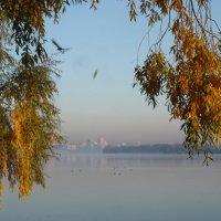 Осенний АРТ в пастельных тонах... :: Тамара Бедай