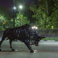 Железный бык :: Виктор