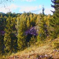 Осень в Карелии :: Nikolay Monahov
