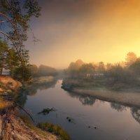 Там над рекою есть сосна ... :: Roman Lunin
