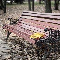 Осень :: Marik ...