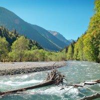 Река Малая Лаба :: Денис Масленников