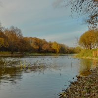 Теплый октябрь :: Olcen Len