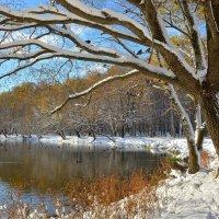 Ранняя зима в октябре :: Татьяна Каневская