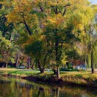 "Осенний ""вальс"". :: barsuk lesnoi"