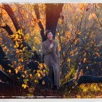последние дни золотой осени :: Эльмира Суворова