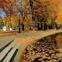 Осень :: Victor SVT